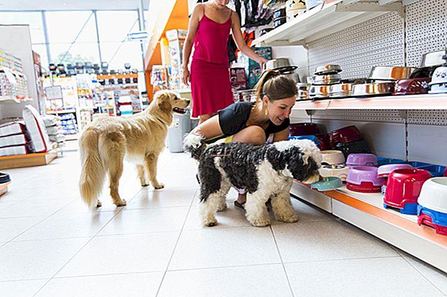 Come avviare una boutique per animali domestici?