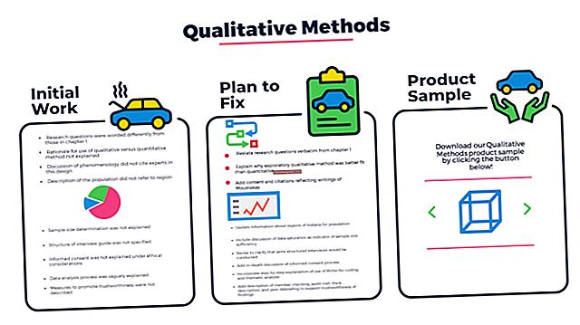 Esempi di strategie di ricerca qualitativa